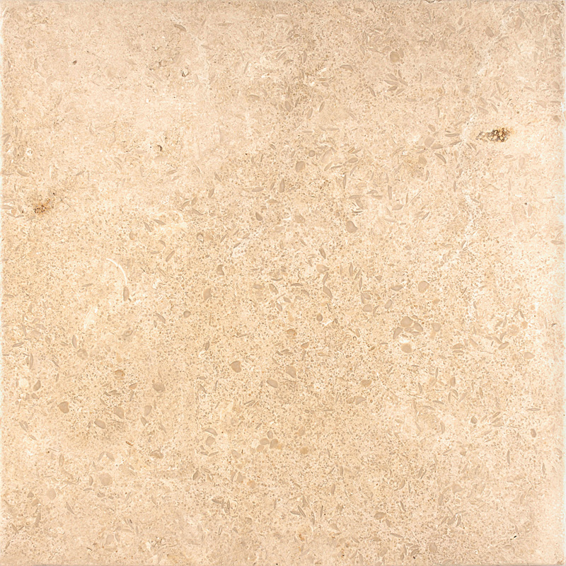 Seashell Antiqued 45,7x45,7 Limestone Fayans Tl02357s
