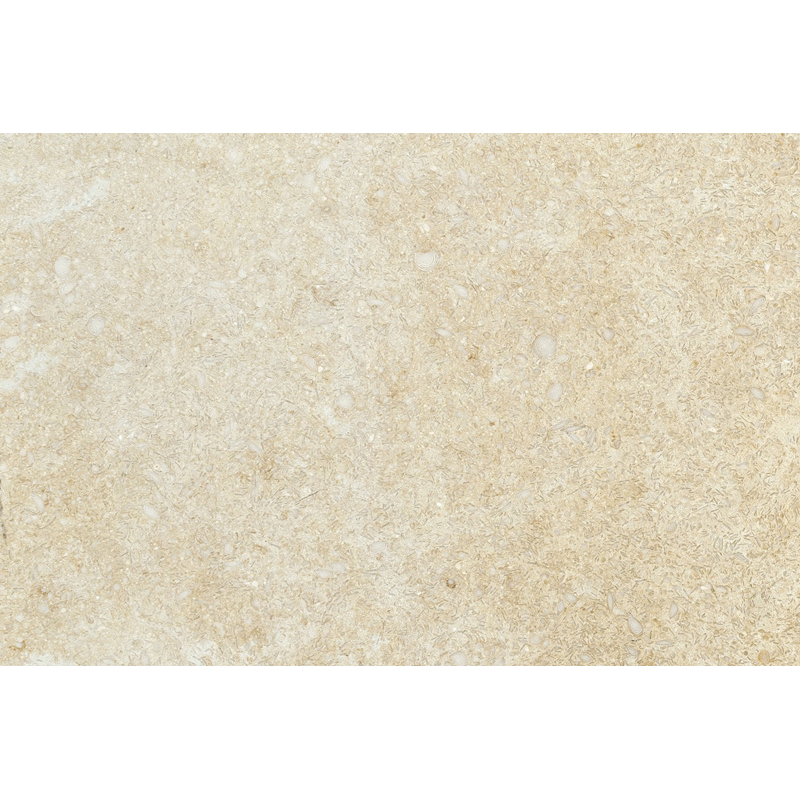 Seashell Honed 1st Quality 50x80 Limestone Fayans